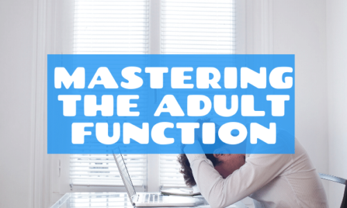 Stress function, the Adult function, Adult responsibilities